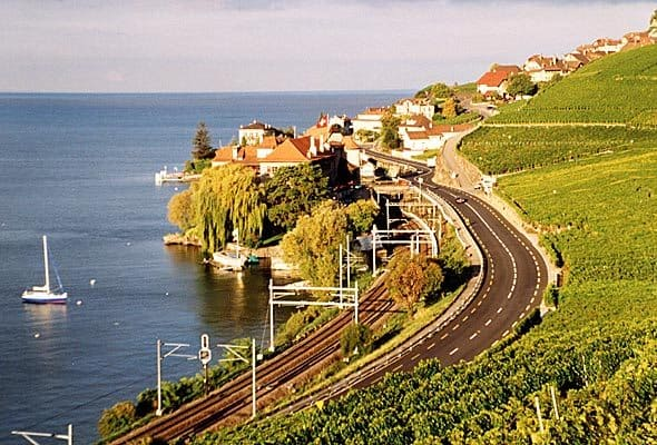 Wine Region Near Geneva