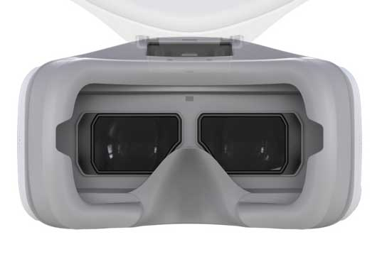 DJI Goggles Screens
