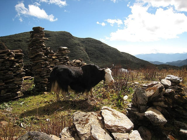 Druk Path Trek, Bhutan