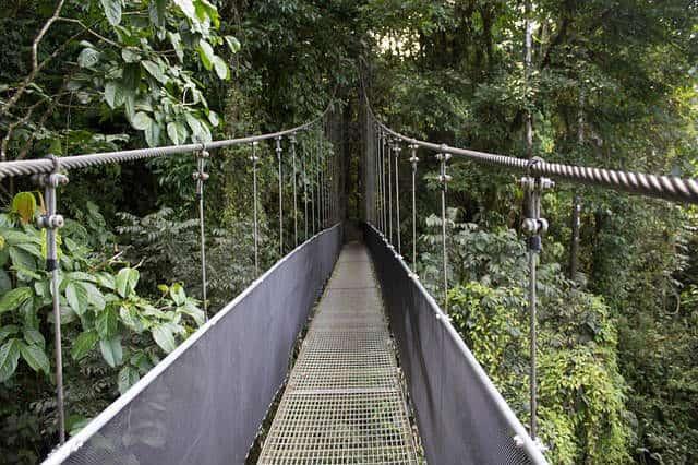 Sky Walk Hanging Bridge