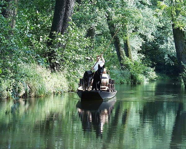 Spreewald - Day Trips from Berlin