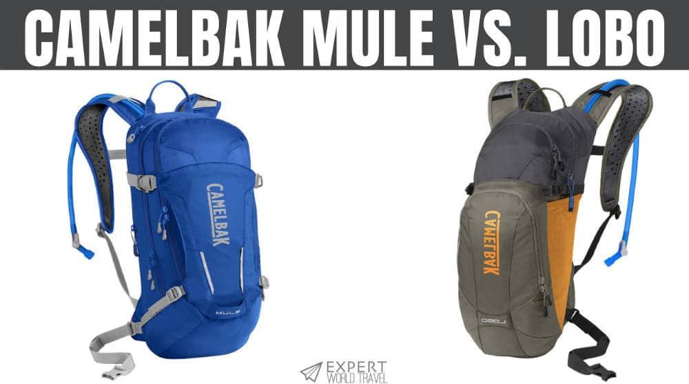 2f41c80f961 CamelBak MULE Vs. Lobo: Hydration Pack Comparison | Expert World Travel