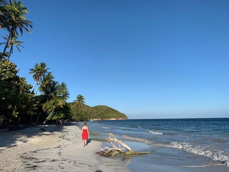 Manicheel Bay Beach, Providencia