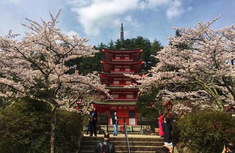 Chureito Pagoda front view
