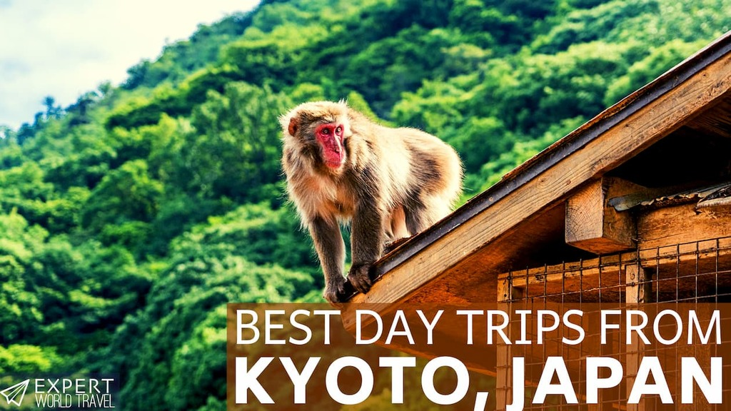 day trips kyoto