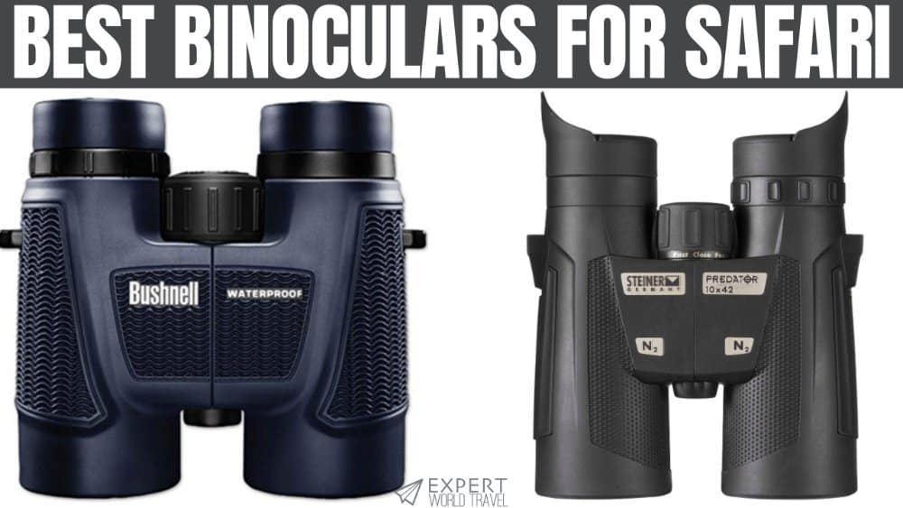 Binoculars for Adults,10x50 High Power HD Binoculars for Birds Watching,Hunting,Concert,Sports Events,Hiking,Traveling,Sightseeing,Kids Binocular Compact,Wide Angle Lens 10X Magnification,1.6 lb