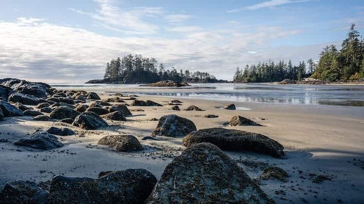 Best Campsites On Vancouver Island