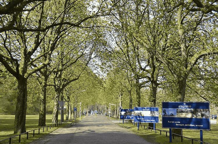 Nationa Parks Netherlands De Hoge Veluwe National Park