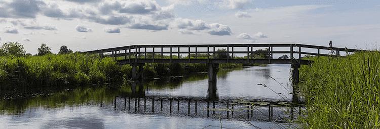 National Parks Netherlands De Alde Feanen National Park