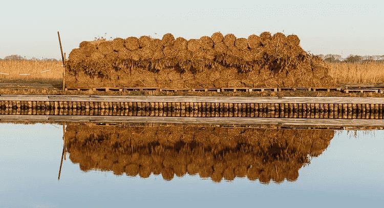 National Parks Netherlands Weerribben Wieden National Park