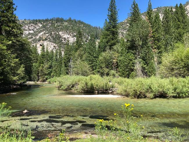 Sequoia NP Water