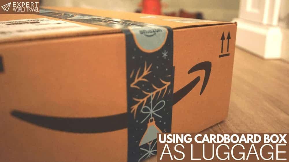 Cardboard Box As Luggage